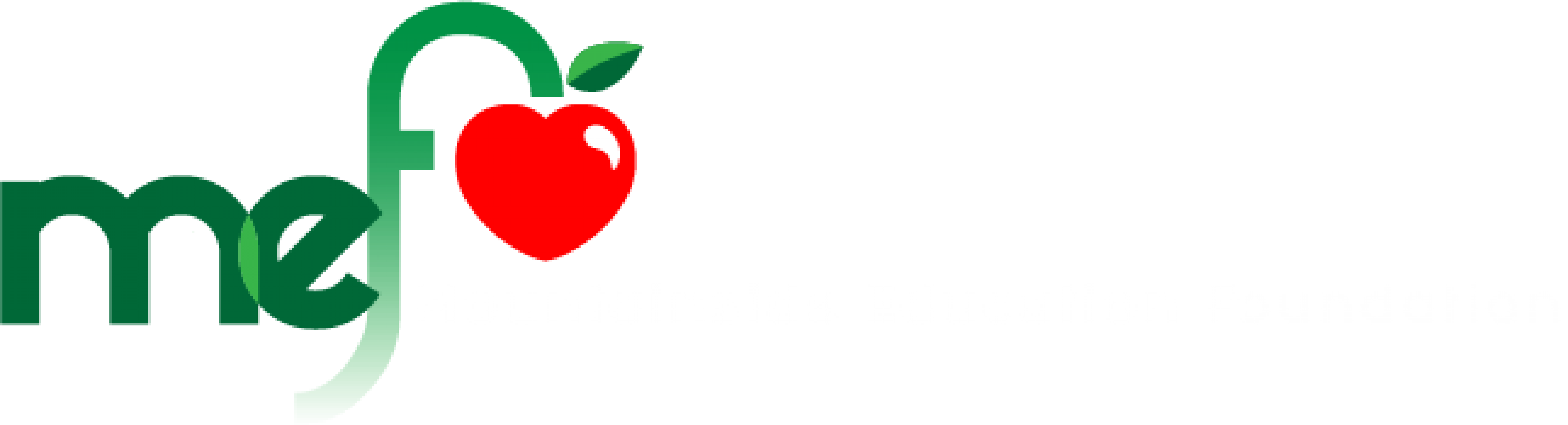 Mountainside Education Foundation